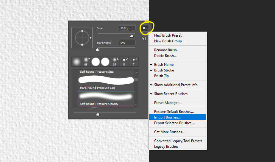Click the settings icon and select import brushes